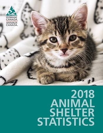 Canadian Animal Shelter Statistics Humane Canada