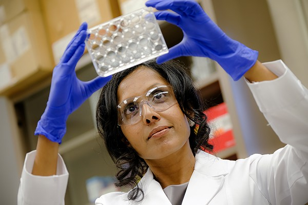 Dr. Charu Chandrasekera in the lab